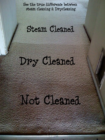 Levels of Carpet Cleaning